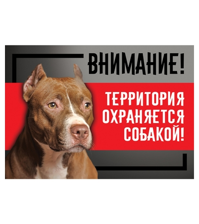 """Табличка """"Охраняется собакой"""", стаффордширский терьер, 250*170мм"""